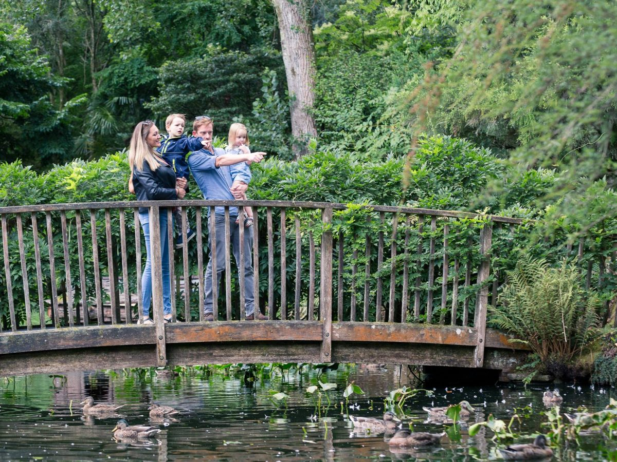 News & EventsTake a look at what's going on at Pinetum