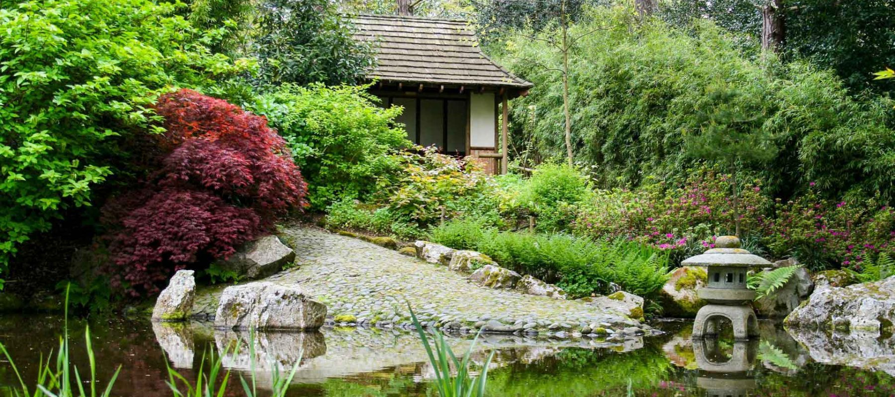 japanese-garden-12